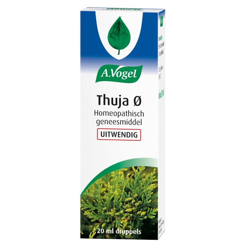 Thuja Ø - UITWENDIG