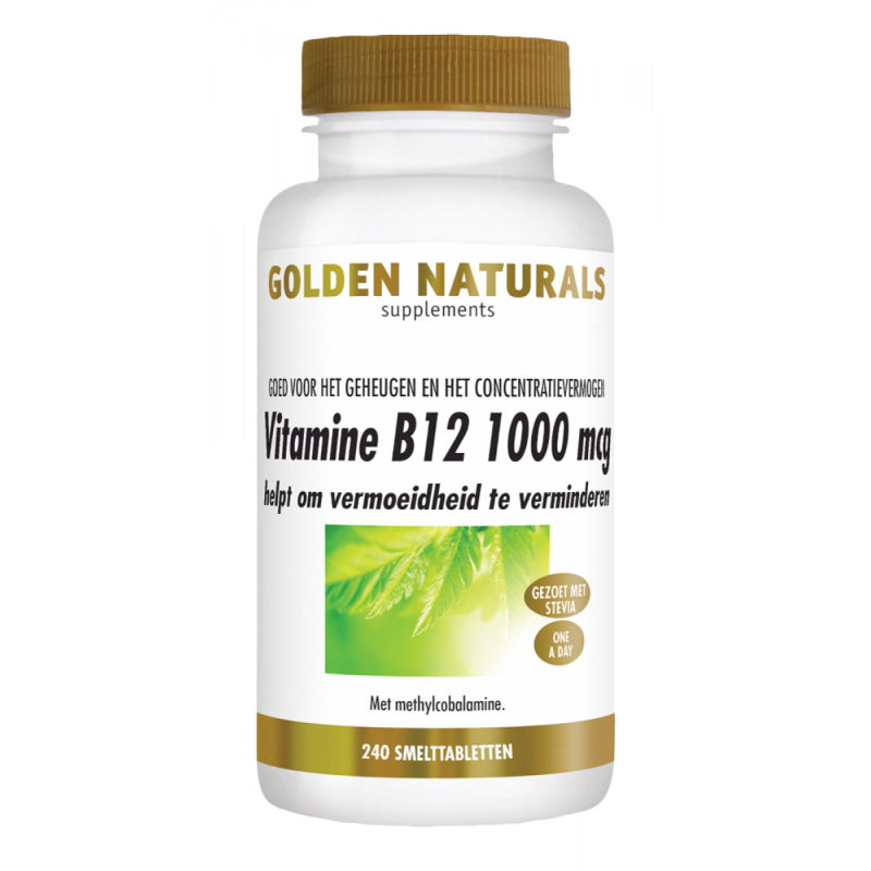 Vitamine B12 1000 mcg - Methylcobalamine GN